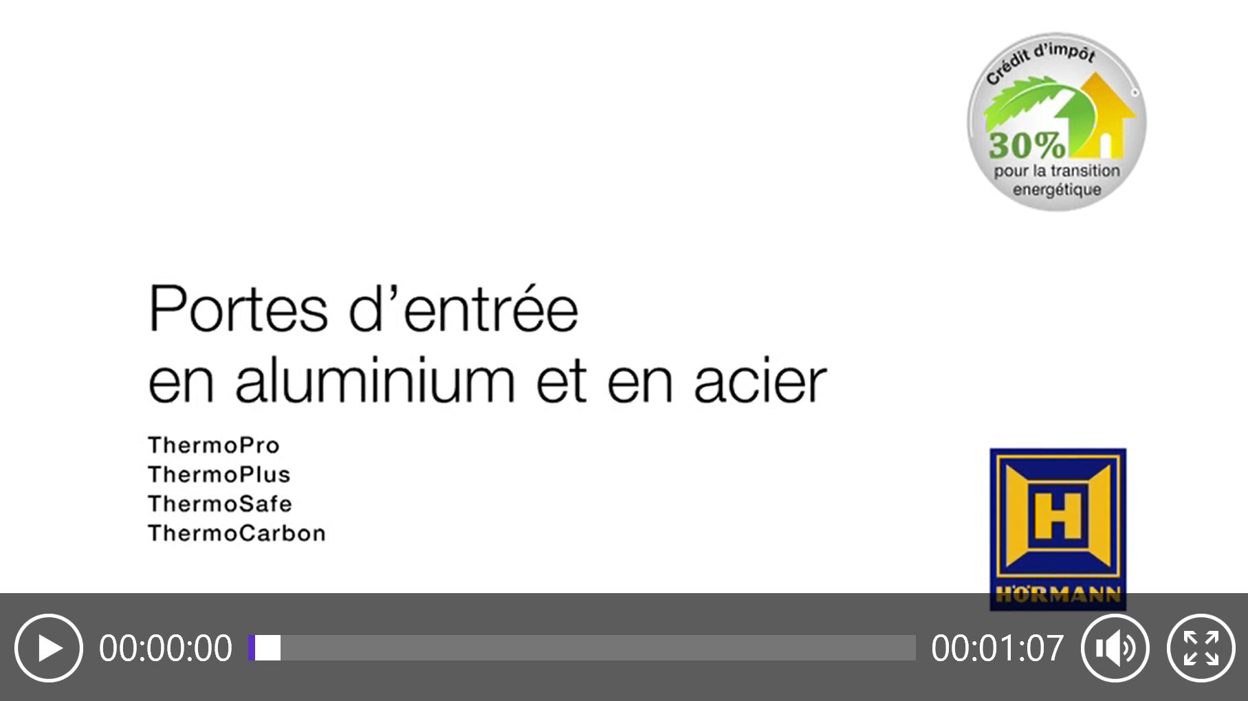 Portes d'entrée en aluminium et en acier